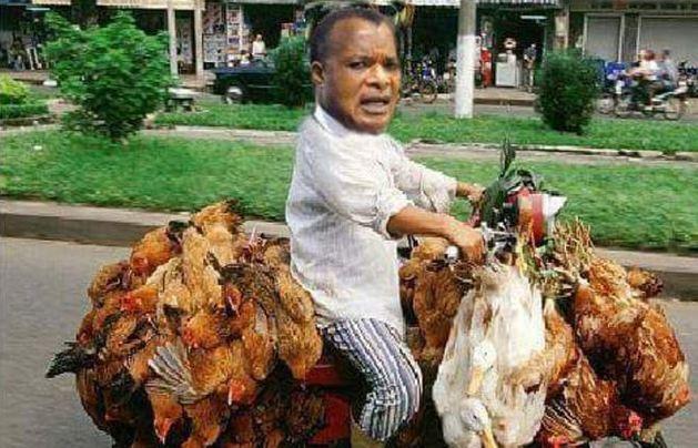 Sassou Nguesso, saigneur du Congo, dans le hold-up permanent depuis 40 ans !
