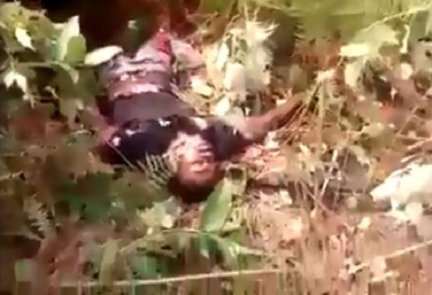 Carnage des miliciens du pouvoir dans le Pool  [Vidéo]