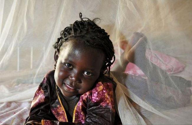 Congo: le paludisme, cause d'absentéisme à l'école et au travail
